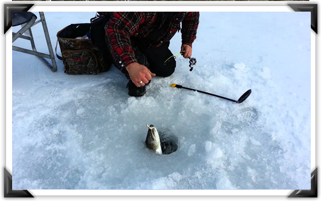 ice-fishing.png